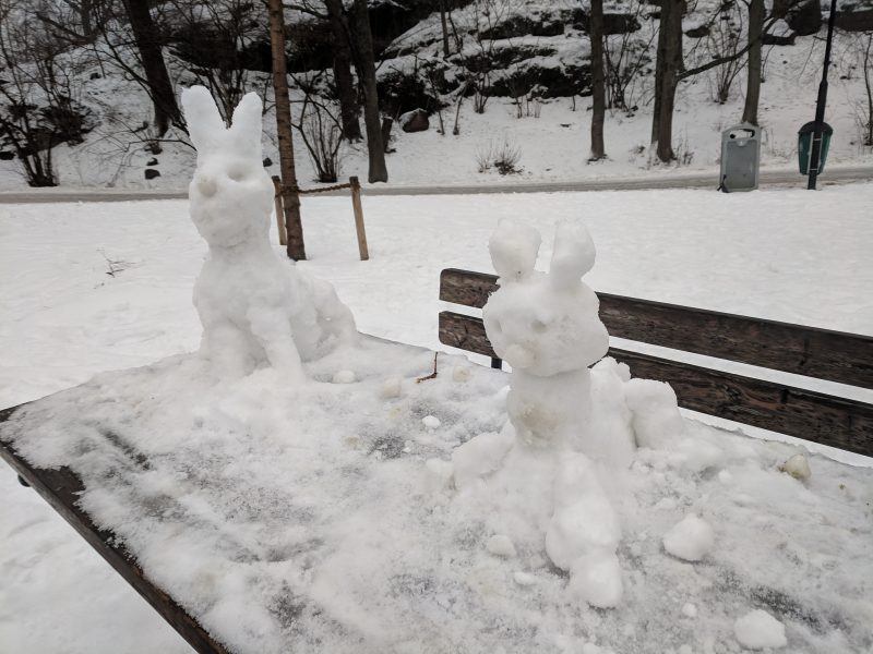 Tigermat och snöharar